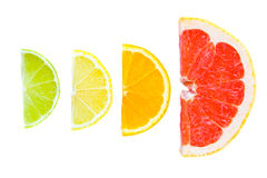 blandad citrusfrukt Arkivfoto