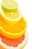 blandad citrusfrukt Fotografering för Bildbyråer