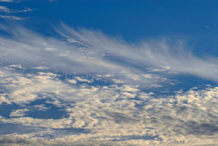blandad cloudscape Arkivfoto
