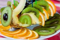 Blandad frukt Fotografering för Bildbyråer