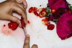 Blandad fruktsallad Arkivfoton