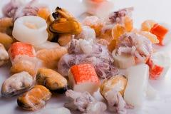 Blandad fryst seefood Arkivbild