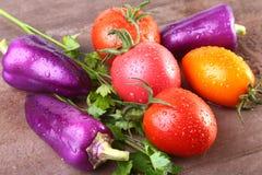 Blandad grönsak med purpurfärgade exotiska färgspanska peppar och tomater som isoleras på stenbakgrund Royaltyfri Foto