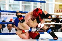 Blandad kampsportkämpe under kampen Arkivfoto