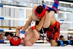 Blandad kampsportkämpe under kampen Arkivbild