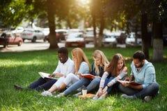 Blandad-lopp grupp av studenter som tillsammans sitter på grön gräsmatta av universitetsområdet royaltyfri foto