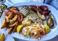 Blandad maträtt av fisken och skaldjur på den ovala plattan Arkivfoton