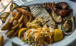 Blandad maträtt av fisken och skaldjur på den ovala plattan Royaltyfria Bilder