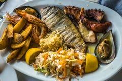 Blandad maträtt av fisken och skaldjur på den ovala plattan Royaltyfri Fotografi