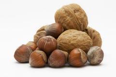 blandad nuts organisk white för bakgrund royaltyfri foto