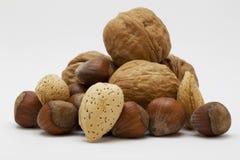 blandad nuts organisk white för bakgrund arkivbild