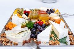 Blandad ost och druvor Royaltyfri Fotografi