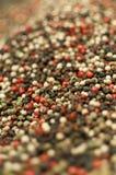 blandad peppar Arkivbild