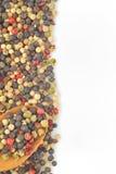 blandad peppar Royaltyfri Foto