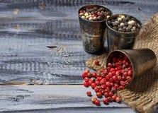 Blandad peppar i metallisk bunke Fotografering för Bildbyråer