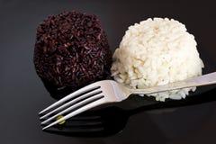 Blandad rice Arkivfoton