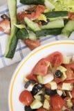 Blandad sallad med tomater och blandade grönsaker Royaltyfri Fotografi