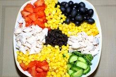 Blandad sallad på en platta Ingredienser: höna på burk havre, ol Royaltyfria Bilder