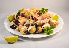 blandad skaldjur Arkivfoton