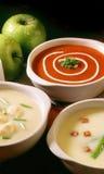 blandad soup Arkivbild