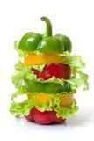 Blandad spansk peppar med grönsallat Arkivbilder