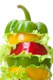 Blandad spansk peppar med grönsallat Royaltyfri Fotografi