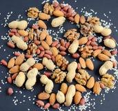Blandade blandade muttrar, jordnötter, mandlar, valnötter och sesamfrö Royaltyfri Foto