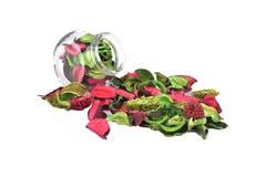 Blandade blommakronblad i säsongsbetonat Royaltyfria Foton