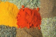 Blandade färgrika kryddor och örter Top beskådar Royaltyfria Bilder
