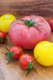 Blandade färgrika våta tomater Arkivfoto