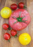 Blandade färgrika våta tomater på träbräde Royaltyfri Bild