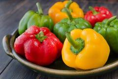 Blandade färgrika variationer av söta peppar Royaltyfri Bild