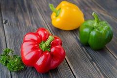 Blandade färgrika variationer av söta peppar Arkivfoto