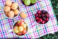 blandade frukter Arkivbilder