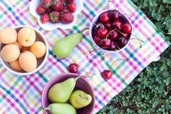 blandade frukter Fotografering för Bildbyråer