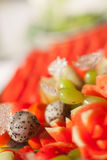 Blandade frukter, uppsättning Arkivbild