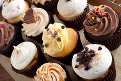 Blandade gourmet- muffiner Arkivfoto