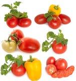 blandade grönsaker Arkivbilder