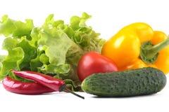Blandade grönsaker, ny spansk peppar, tomat, chilipeppar, gurka och grönsallat som isoleras på vit bakgrund Arkivfoto