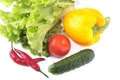 Blandade grönsaker, ny spansk peppar, tomat, chilipeppar, gurka och grönsallat som isoleras på vit bakgrund Royaltyfria Bilder