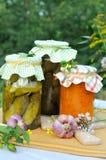 blandade hemlagade preserves Royaltyfri Fotografi