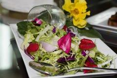 blandade kalla nya grönsaker Royaltyfri Fotografi