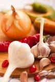 blandade kryddor Royaltyfri Foto