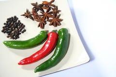 blandade kryddor Royaltyfri Bild