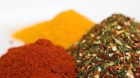 blandade kryddor Royaltyfria Bilder