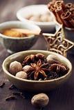 Blandade kryddor för att baka för jul Royaltyfri Fotografi