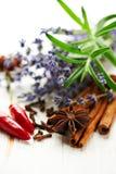 blandade kryddor för blommalavendelrosmarinar arkivfoto
