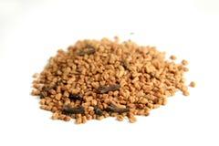 blandade kryddor för kryddnejlika royaltyfria foton