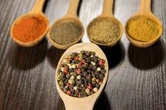 Blandade kryddor i träskedar på en tabell Royaltyfria Bilder