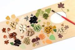 blandade legumes Arkivbild